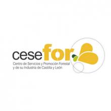 Fundación Cesefor